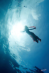 SEA DANCE: IN THEIR ESSENCE