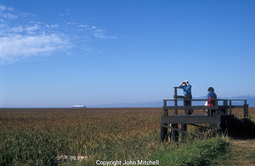 Birdwatchers on the marshes at the George C. Reifel Migratory Bird Sanctuary in Delta, BC, Canada.