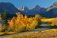 Aspens and Saint Mary Lake <br />   with Split and Norris Mountains<br />     from Going-to-the-Sun Highway<br /> Glacier National Park,  Rocky Mountains,  Montana