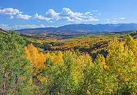 Gunnison National Forest, CO:  Fall color in Ohio Creek Valley and the West Elk Mountains in West Elk Wilderness