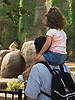 July 16, 2005: Jordan Dohrman, 2, and her father Scott Dohrman, both of Old Beth Page, NY, watch lions at the Lincoln Park Zoo in Chicago.  Photo by Kevin J. Miyazaki/Redux for The New York Times