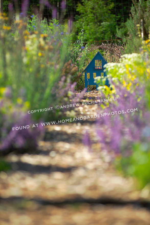 From the entrance to this organic kitchen garden, a shallow focus long view showing mixed vegetables and colorful flowering herbs in their full summer abundance on either side of the mulched center path, with a blue-painted cutout serving as garden art at the far end. Garden design by Stenn Design