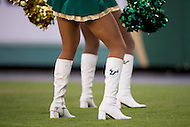 Tampa, FL - September 4th, 2016: USF cheerleaders in action during game against Towson at Raymond James Stadium in Tampa, FL.  (Photo by Phil Peters/Media Images International)