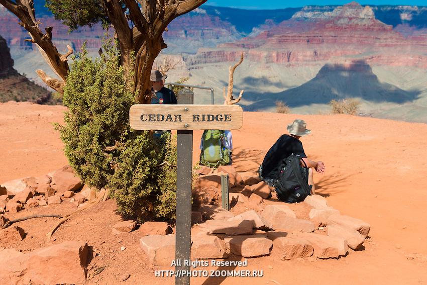 Cedar Ridge on South Kaibab Trail, Grand Canyon National Park