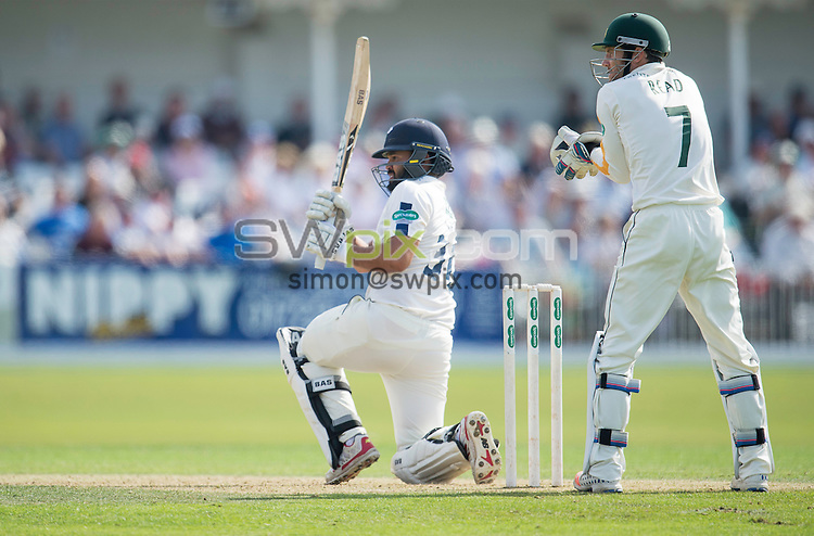 Picture by Allan McKenzie/SWpix.com - 23/08/2016 - Cricket - Specsavers County Championship - Yorkshire County Cricket Club v Nottinghamshire County Cricket Club - North Marine Road, Scarborough, England - Azeem Rafiq hits out.