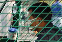 BANGLADESH , Dhaka , air pollution, auto-rickshaw driver with mouth protection / Bangladesch , Dhaka , Autorickscha Fahrer mit Mundschutz vor Luftverschmutzung