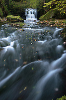 Watersmeet near Lynmouth, North Devon