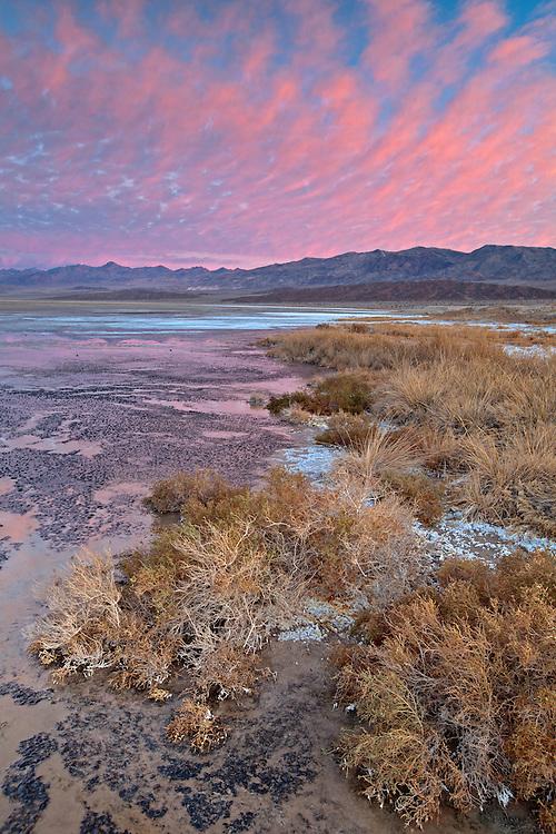 Cottonball Marsh area along Salt Creek in Death Valley National Park, California, USA