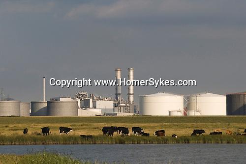Isle of Grain Kent. UK. Oil refinery.
