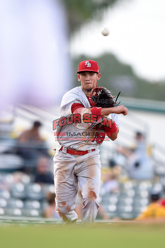 Palm Beach Cardinals third baseman Ildemaro Vargas (18) throws to first during a game against the Bradenton Marauders on June 23, 2014 at McKechnie Field in Bradenton, Florida.  Bradenton defeated Palm Beach 11-6.  (Mike Janes/Four Seam Images)