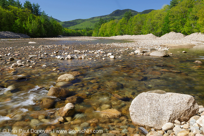 Saco River in the Bartlett, New Hampshire during the spring months. In 2011, Tropical Storm Irene caused major erosion damage along the Saco River. The storm pushed massive amounts of rocks onto the riverbank and changed the path of the river channel in some areas.
