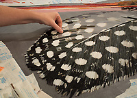 Plume was created by New Ravenna's master mosaicists using various shades of jewel glass. The custom designs are one-of-a-kind and depict pheasant and guinea feathers. This design is part of the Broad Street™ collection for New Ravenna.