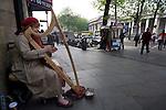 Harpist Brenda Malloy busking outside Trinity College Dublin...