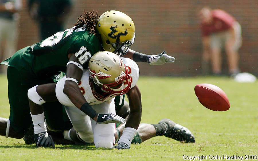 TALLAHASSEE, FL 9/26/09-FSU-USF FB09 CH39-Florida State's Jarmon Fortson watches his fumble roll out of bounds as South Florida's Mistral Raymond tries to get to the ball during first half action Saturday at Doak Campbell Stadium in Tallahassee. ..COLIN HACKLEY PHOTO
