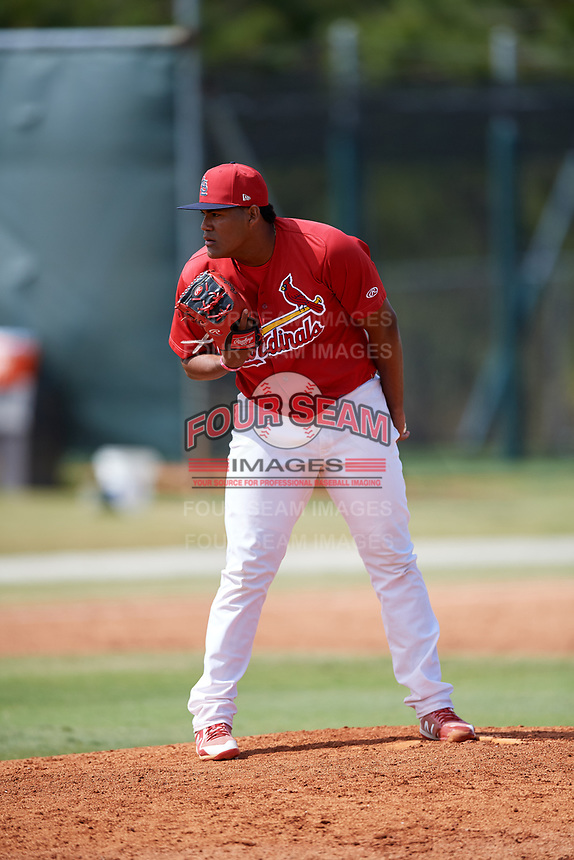 St. Louis Cardinals pitcher Enrique Perez (30) during a Minor League Spring Training game against the Miami Marlins on March 26, 2018 at the Roger Dean Stadium Complex in Jupiter, Florida.  (Mike Janes/Four Seam Images)