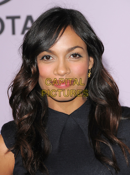 ROSARIO DAWSON.The 18th Annual Environmental Media Awards held at The Ebell Theatre in Los Angeles, California, USA..November 13th, 2008.headshot portrait .CAP/DVS.©Debbie VanStory/Capital Pictures.