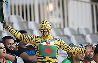 A Tigers fan in full cheer during Pakistan vs Bangladesh, ICC World Cup Cricket at Lord's Cricket Ground on 5th July 2019