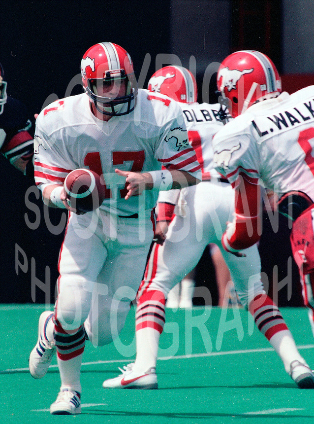 Joe Barnes Calgary Stampeders quarterback 1985 Copyright photograph Scott Grant