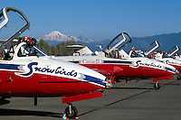 Canadian Forces Snowbirds on Display, Abbotsford International Airshow, BC, British Columbia, Canada - Mt Baker, USA in distance