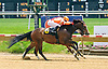 Cat in the Forest winning at Delaware Park on 5/20/15