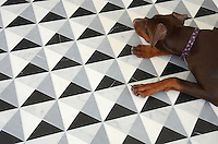 Christopher 2, a hand-cut mosaic shown in honed Nero Marquina, Thassos, Carrara, and Bardiglio, is part of the Illusions® collection by New Ravenna.