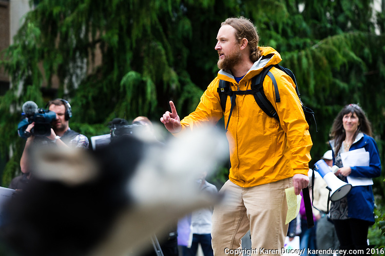 "Brett Haverstick, an activist from Idaho, speaks at a rally outside the Washington Department of Fish and Wildlife (WDFW) headquarters in Olympia, Washington against the killing of the Profanity Peak wolf pack in eastern Washington on September 1, 2016. ""Wolves and livestock cannot coexist. Livestock should be removed from federal lands if wolves are to recover in the west. You can't have both on their landscapes."" he says. Barely visible but loudly heard, Sherman (bottom left), a 5 year-old Siberian Husky belonging to Todd Davison from Olympia, Wash.  howls into the crowd.(photo © Karen Ducey Photography)"