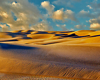 Sandunes at sunset. Oregon Dunes National Recreational Area, Oregon