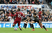 Liverpool's Daniel Sturridge goes down under the challenge from Newcastle United's Mikel Merino<br /> <br /> Photographer Rich Linley/CameraSport<br /> <br /> The Premier League -  Newcastle United v Liverpool - Sunday 1st October 2017 - St James' Park - Newcastle<br /> <br /> World Copyright &copy; 2017 CameraSport. All rights reserved. 43 Linden Ave. Countesthorpe. Leicester. England. LE8 5PG - Tel: +44 (0) 116 277 4147 - admin@camerasport.com - www.camerasport.com