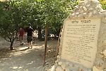 Ein Sharir in the Golan Heights