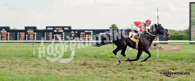 Rock in Bage winning at Delaware Park on 9/5/13