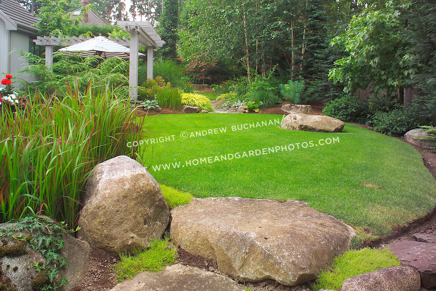 One of two small lawns designed as ponds that make up the upper, walking garden in this otherwise small suburban backyard east of Seattle.  Imagine the boulders as pondside platforms and the Japanese Bloodgrass as cattails in this Zen-like interpretation of a traditional Japanese rock garden. Design by Sander Groves landscapes, Inc.