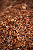 USA, Oregon, Willamette Valley, close up detail of the Red Jory Soil at the White Rose Estate winery and vineyard in Dayton