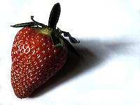 BOGOTÁ-COLOMBIA-18-01-2013. Fresa de la sabana de Bogota, Colombia. Strawberry of the Bogotá, Colombia.  (Photo:VizzorImage)