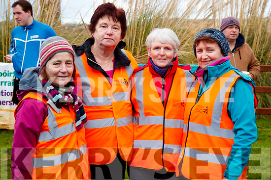 Mary Houlihan, Eileen O'Shea, Debbie Quirke and Patricia Tyther, pictured at the Operation Transformation Walk at Tralee Bay Wetlands on Saturday morning last.
