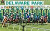 Animauxselle winning at Delaware Park on 6/21/17