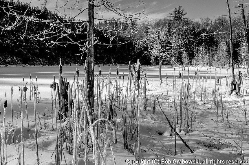 Winter at Lilypad Pond in the Pharoah Lake Wilderness Area in the Adirondack Mountains in New York State