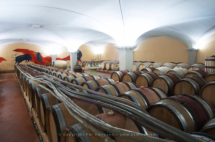 barrel aging cellar dom g robin crozes hermitage rhone france