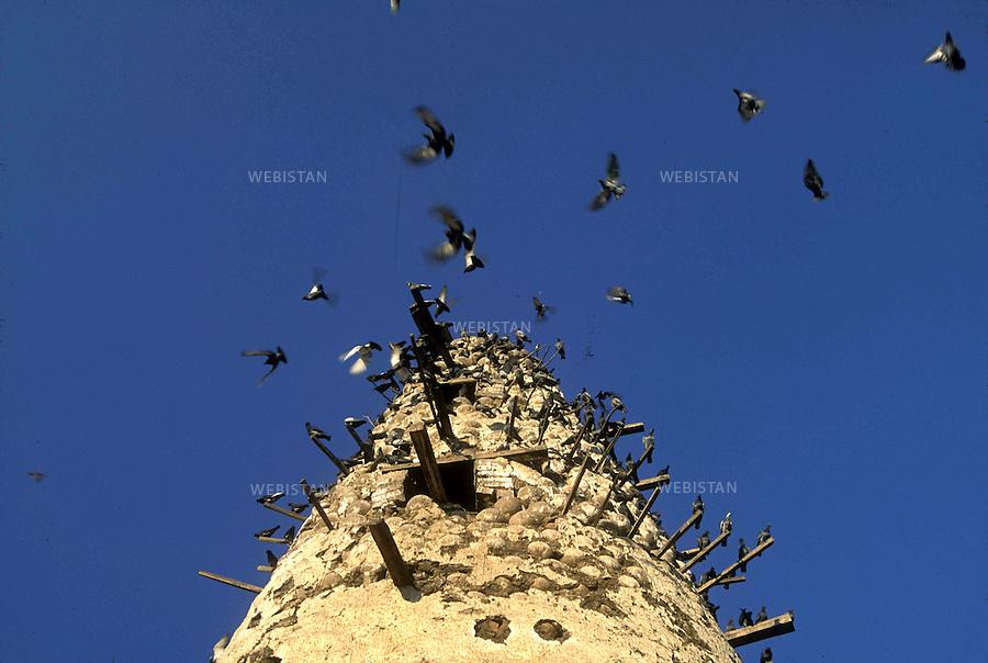 ..Egypt. Nile Delta. 1996. Pigeon houses made of bricks of raw earth and pots...Egypte. Delta du Nil. 1996. Pigeonniers faits de briques de terre crue et de pots.