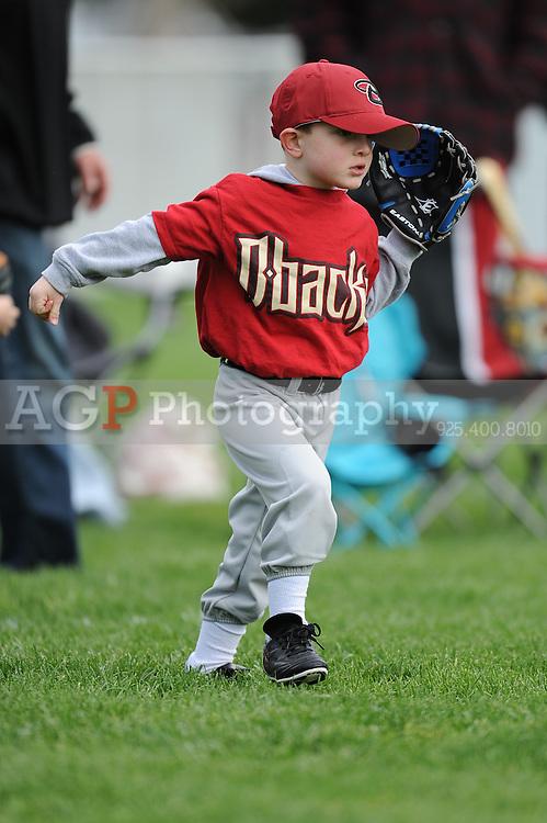 The T-Ball Diamondbacks of Pleasanton National Little League  March 21, 2009.