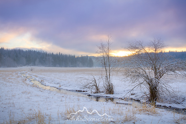 Idaho, North, Kootenai County, Cocolalla. Cocolalla Creek meaders across a snow covered meadow at dawn in winter.