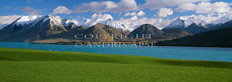 Green farmland and Lake Coleridge with snow capped mountains in background.