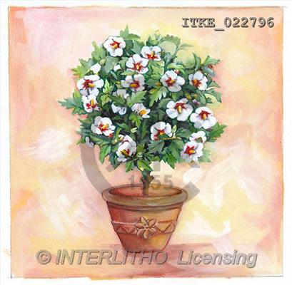 Isabella, FLOWERS, paintings(ITKE022796,#F#) Blumen, flores, illustrations, pinturas ,everyday