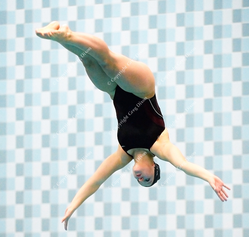 Madison Edgewood's Ginger Lingard takes first place in the WIAA Division 2 state diving championships on Friday, November 13, 2015 at the UW Natatorium in Madison, Wisconsin