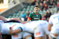 Freddie Burns of Leicester Tigers watches a scrum. LV= Cup match, between Leicester Tigers and Sale Sharks on November 9, 2014 at Welford Road in Leicester, England. Photo by: Patrick Khachfe / JMP