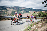 breakaway group with Sander Armée (BEL/Lotto-Soudal) at the front<br /> <br /> Stage 15: Tineo to Santuario del Acebo (154km)<br /> La Vuelta 2019<br /> <br /> ©kramon