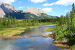 MANY SPRINGS, BOW VALLEY PROVINCIAL PARK, ALBERTA, CANADA
