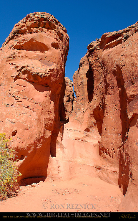 Entrance, Peek-a-Boo Slot Canyon, Dry Fork Wash, Coyote Gulch, Hole in the Rock Road, Grand Staircase Escalante, Utah