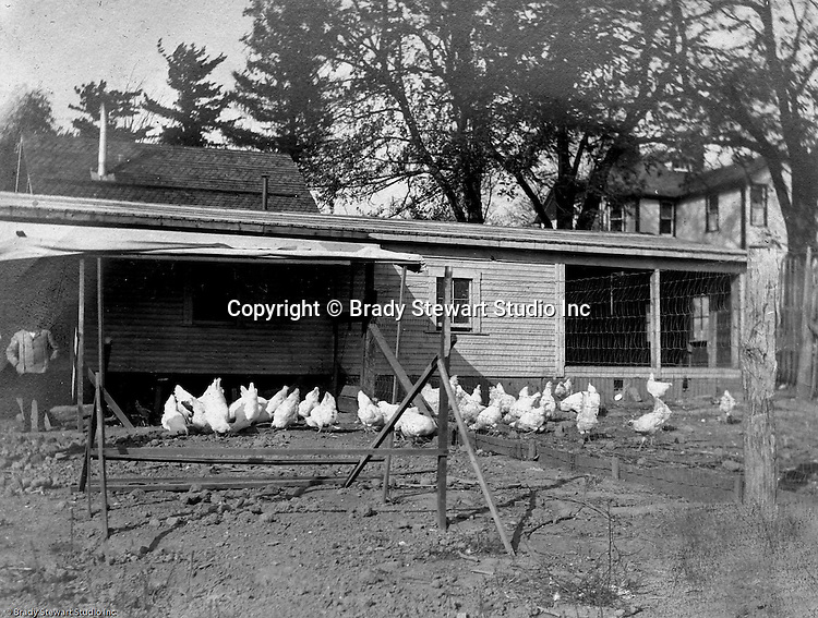 Hopedale Ohio:  While Brady Stewart was taking progress photographs for the Wabash Railroad, he took a detour through Hopedale Ohio and took some additional views of the area.  View of a chicken coup on one of the local farms.