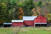 Colorful autumn farm.