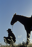 Cowboy and horse in silhouette. Ponderosa Ranch. Senaca OR.